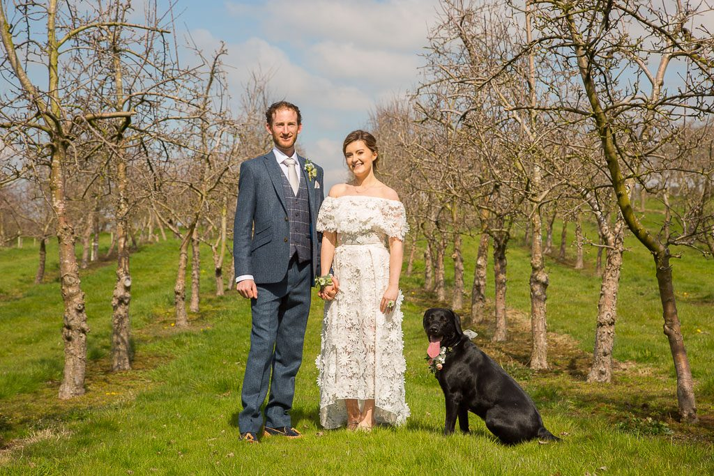 Wedding Couple in the Orchard with the Black Lab